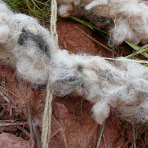Erosionsschutzmatten aus Schafwolle