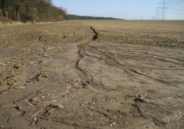 Bodenerosion, hier Grabenerosion; Foto: Tamas Harrach, Uni Gießen