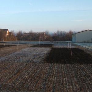 Kompostversuch im Winter