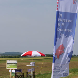Biodiversitätsrundgang in Frankenhausen