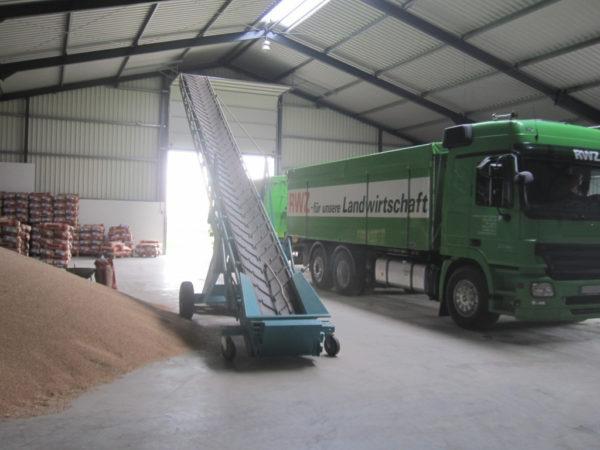 Ein Getreidelager muss sauber, trocken und kühl sein