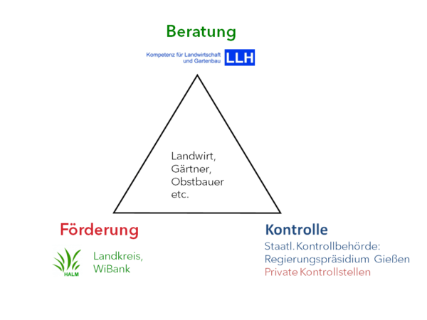Grafik Dreieck Beratung, Förderung und Kontrolle