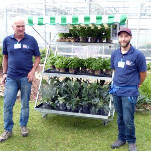 Bernhard Ambrosius und Mathias Holleitner bieten den Besuchern Basilikum, Tomaten, Paprika und Geweihfarn an