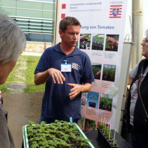 Daniel Gombert erläutert die Veredelung von Tomaten