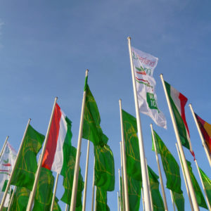 Flaggenmeer der Internationalen Grünen Woche