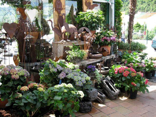 Zierpflanzen-Verkaufsstand