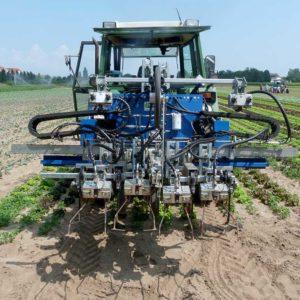 Unkraut mechanisch regulieren - Zwei Feldtage in Südhessen mit innovativen Geräten