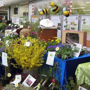 Präsentation verschiedener Pflanzen auf dem Blumengroßmarkt Frankfurt