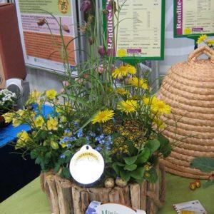 bepflanzter Mini-Garten für Bienen, im Hintergrund ein Bienenkorb