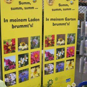 Poster mit Blühpflanzen
