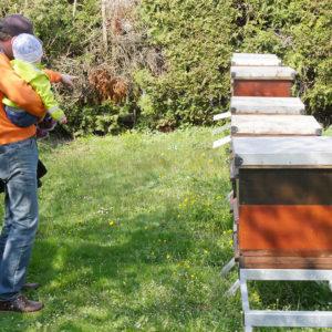 Mann mit Kleinkind neben Bienenkästen