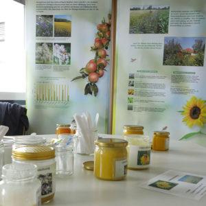 Verschiedene Honigsorten in Gläsern, dahinter Poster zu Bestäubung und Bienenweiden