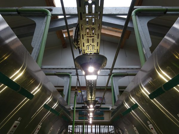 Effiziente LED-Beleuchtung für einen Melkstand