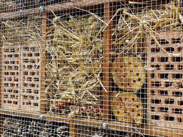Insektenhotel mit Stroh und Ziegelsteinen.