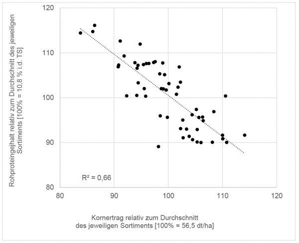 Rohproteingehalt und Kornertrag von 56 Sorten relativ zum Durchschnitt des Sortimentes im jeweiligen Jahr am jeweiligen Standort [Daten aus 2013-2019]