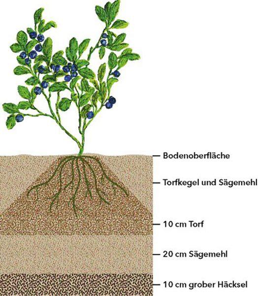 Bodenaufbau mit dem Torf reduzierten System