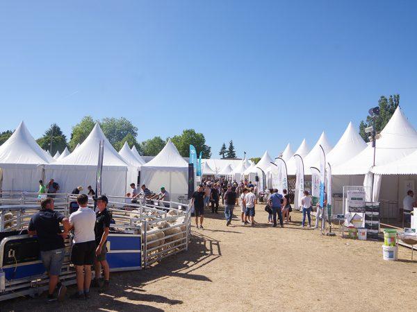 Messegelände mit Zelten