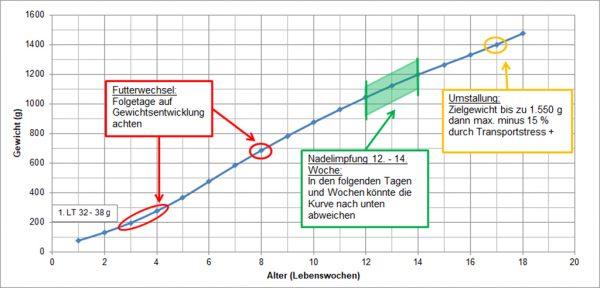 Standardgewichtskurve von Junghennen der braunen Herkünfte
