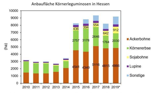 Abbildung 1. Anbaufläche von Körnerleguminosen in Hessen