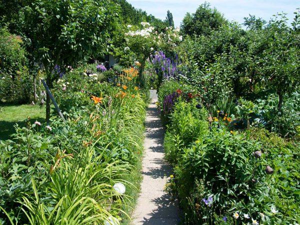 Blühender Kleingarten