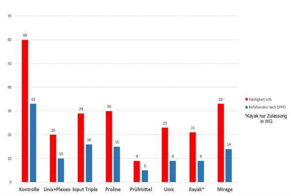 Abbildung 6: Befallshäufigkeit und Befallsindex von Halmbruch