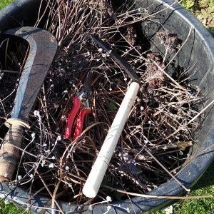 Gartenwerkzeug in Korb