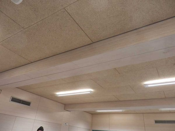 Schule, Frankfurt am Main Riedberg, Decke mit Schallschutz und BauBuche