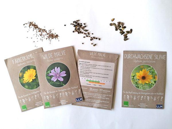 Elemente des Saatpakets: Box, Saatgut, Informationsfaltblätter, Beilageheft