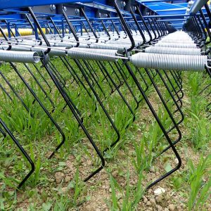 Treffler-Striegel-Federn, um Zugspannung einzustellen
