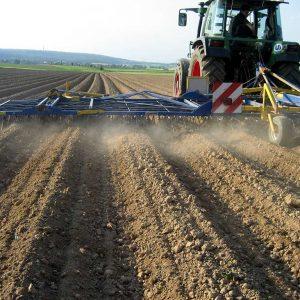 Treffler-Striegel auf dem Kartoffelfeld