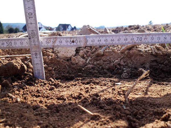 Falsches Saatbett auf ca. 5,5 cm, kein flächiger Schnitt, Zwischenfruchtstoppel stehen teils noch