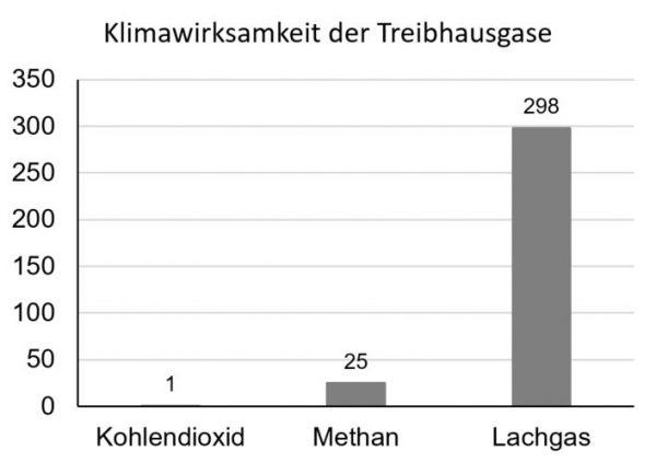 Abbildung 1: Lachgas ist circa 300 Mal klimawirksamer als CO2