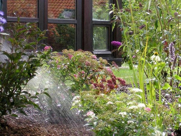 Gießen im Hausgarten