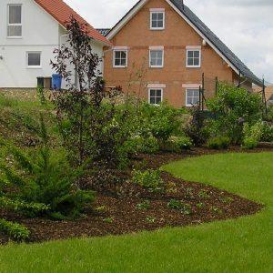 Kombination Bodendeckung durch Mulch in der Anwuchszeit und später durch Bewuchs, Bild zeigt die Zeit direkt nach der Pflanzung