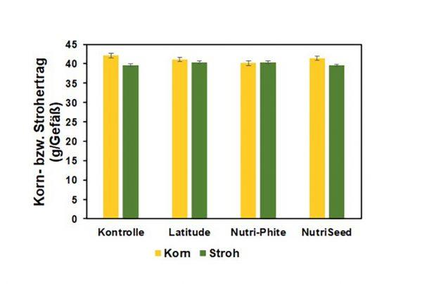 Abbildung 4: Korn- bzw. Strohertrag (g/Gefäß) der geprüften Varianten