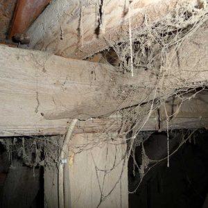 verschmutztes Dachgebälk in einem Getreidlagerraum