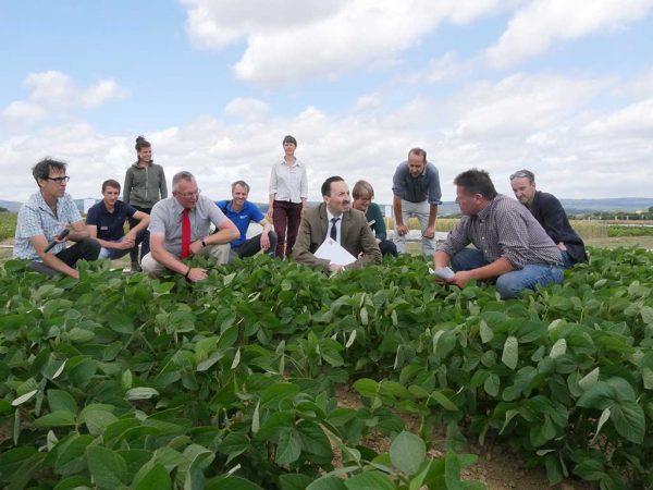 Hessens Umweltstaatssekretär Oliver Conz (5.v.r.) informierte sich anlässlich eines Besuches auf dem Ökoversuchsfeld in Ober-Erlenbach, welche Fruchtfolgen Landwirte im mittel- und südhessischen zukünftig anbauen können