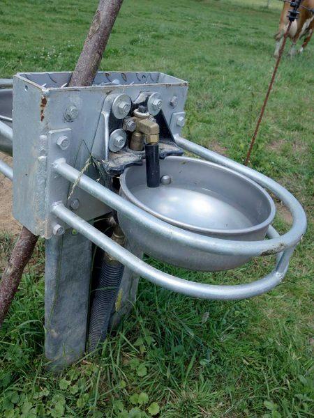 Mit einem Durchfluss von 20 l pro Minute ist diese Edelstahltränkschale eine sinnvolle Variante