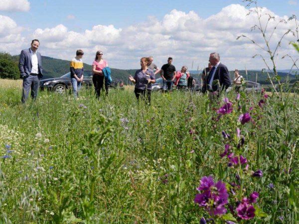 Hessens Umweltstaatssekretär Oliver Conz (l.) informierte sich anlässlich eines Besuches des Feldflurprojektes in Bad Zwesten über den Erfolg der angelegten Blühflächen für die dort lebenden Rebhühner