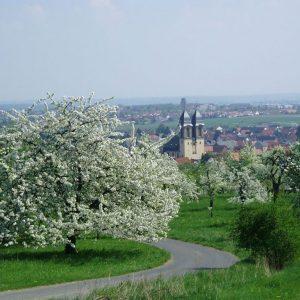Ockstadt: Blick vom Kirschberg