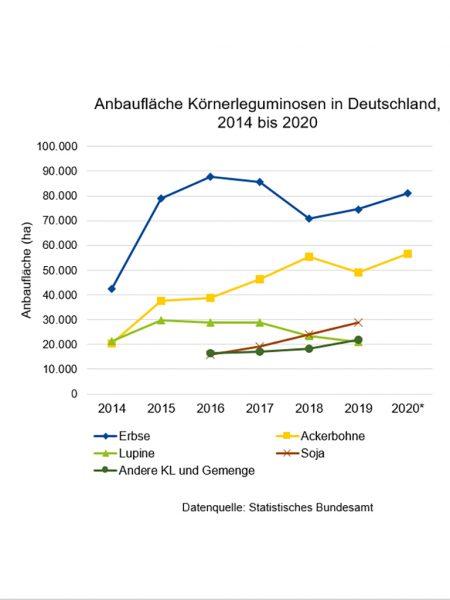 Abbildung 2: Anbaufläche Körnerleguminosen in Deutschland 2014 bis 2020; Quelle: Statistisches Bundesamt