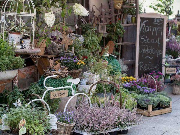 Blumenladen, ansprechend gestalteter Außenbereich mit Text auf Willkommenstafel; Foto: Michael Kauer, Pixabay