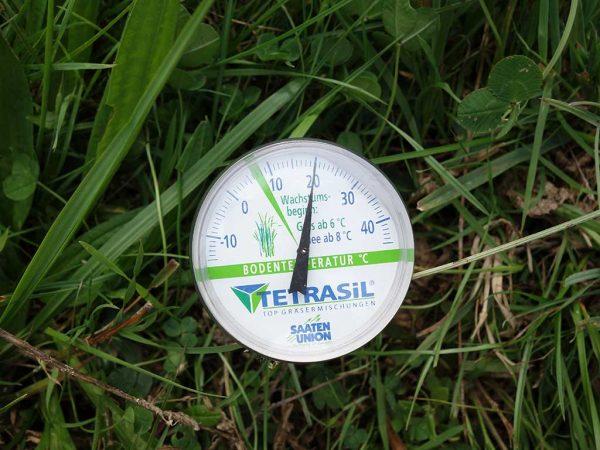 Die optimale Keimtemperatur wird bei einer Herbstnachsaat in jedem Fall erreicht
