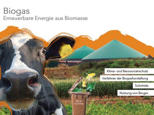 Handbuch Biogas