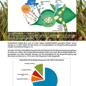 Handbuch Biogas, Seite 13
