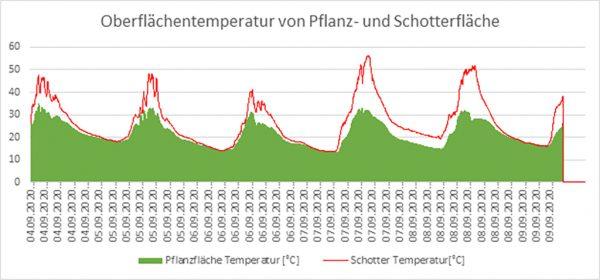 Grafik: Oberflächentemperatur von Pflanz- und Schotterfläche