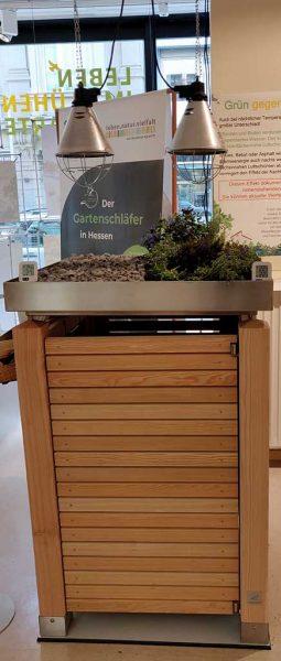 """Mülltonnenbox aus Holz in der Ausstellung """"Leben im blühenden Vorgarten"""" im Umweltladen in Wiesbaden mit aufgebautem Modell. Oberhalb der Box sind die zwei Wärmelampen zu sehen. (Foto: Umweltladen)"""