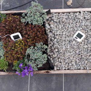 Testmodell 1, dessen Aufbau einer Dachbegrünung entspricht. Links ist die Pflanzfläche und rechts die Schotterfläche zu sehen.