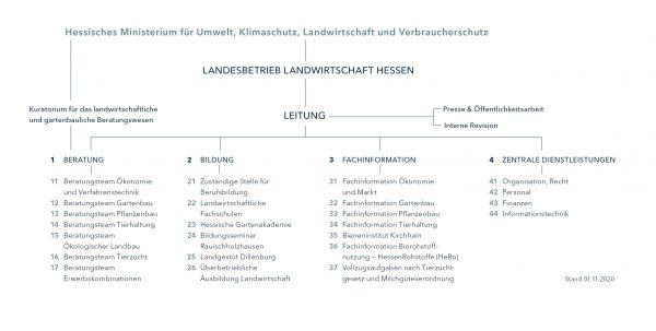 LLH-Organigramm, Stand: 01.11.2020