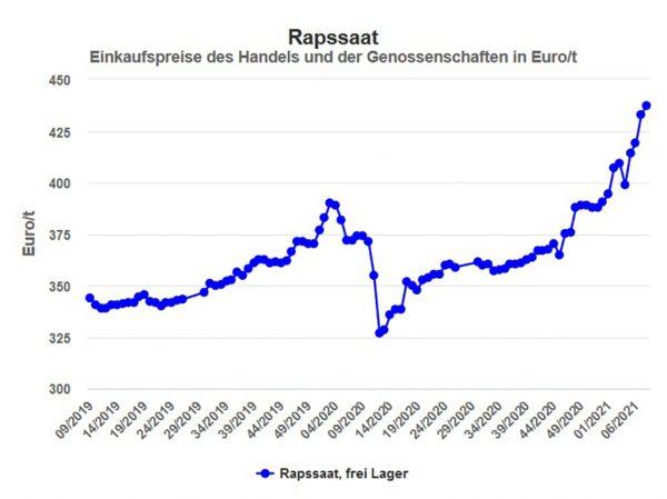 Abbildung 2: Rapspreise in der Marktregion Hessen in Euro/t